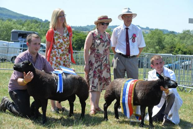 Free Press Series: Monmouthshire Show 2018. Picture: www.christinsleyphotography.co.uk