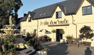 The Inn at The Elm Tree, St Brides