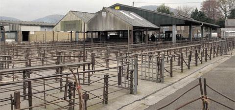 UNDER REVIEW: Abergavenny Livestock Market
