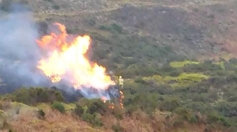 Firefighters tackle Pontypool gorse fire