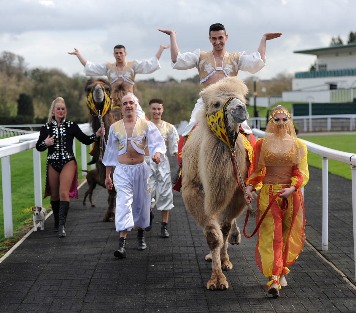 AT THE RACES: Circus Mondao has come to Chepstow Racecourse