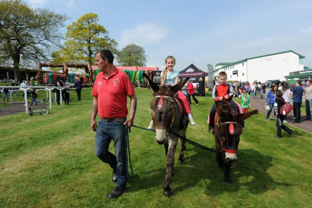 Free Press Series: A Family Fun Day was held alongside an official race day at Chepstow Racecourse.  Pictured left on the donkey Geronimo is Ruby 5 from Caerleon and Caio with Lucas 6 from Cwmbran onboard. (5560331)