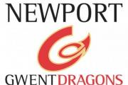 BT Sport backing a supporters village for Dragons Euro quarter