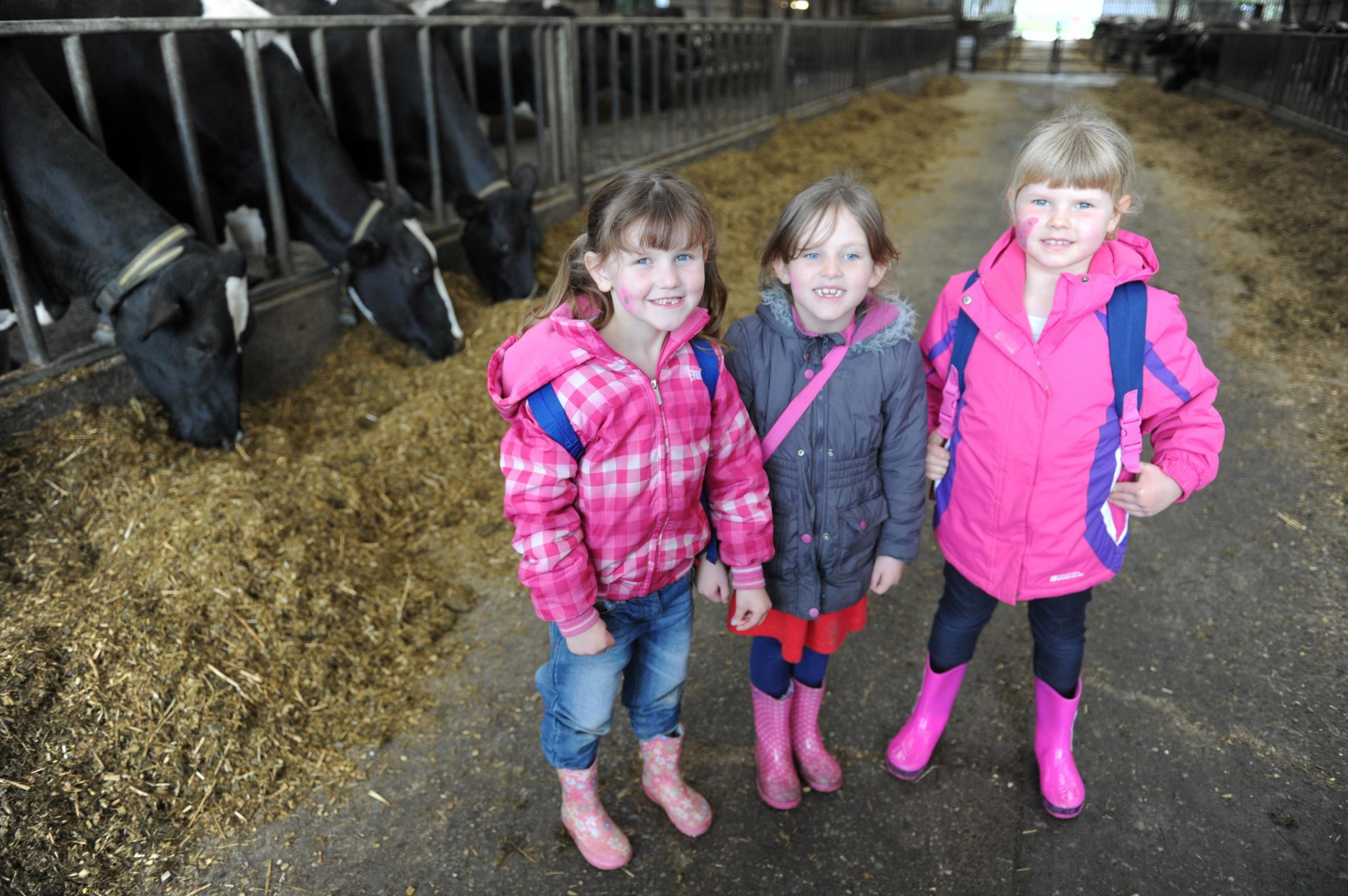 Torfaen pupils get countryside classes