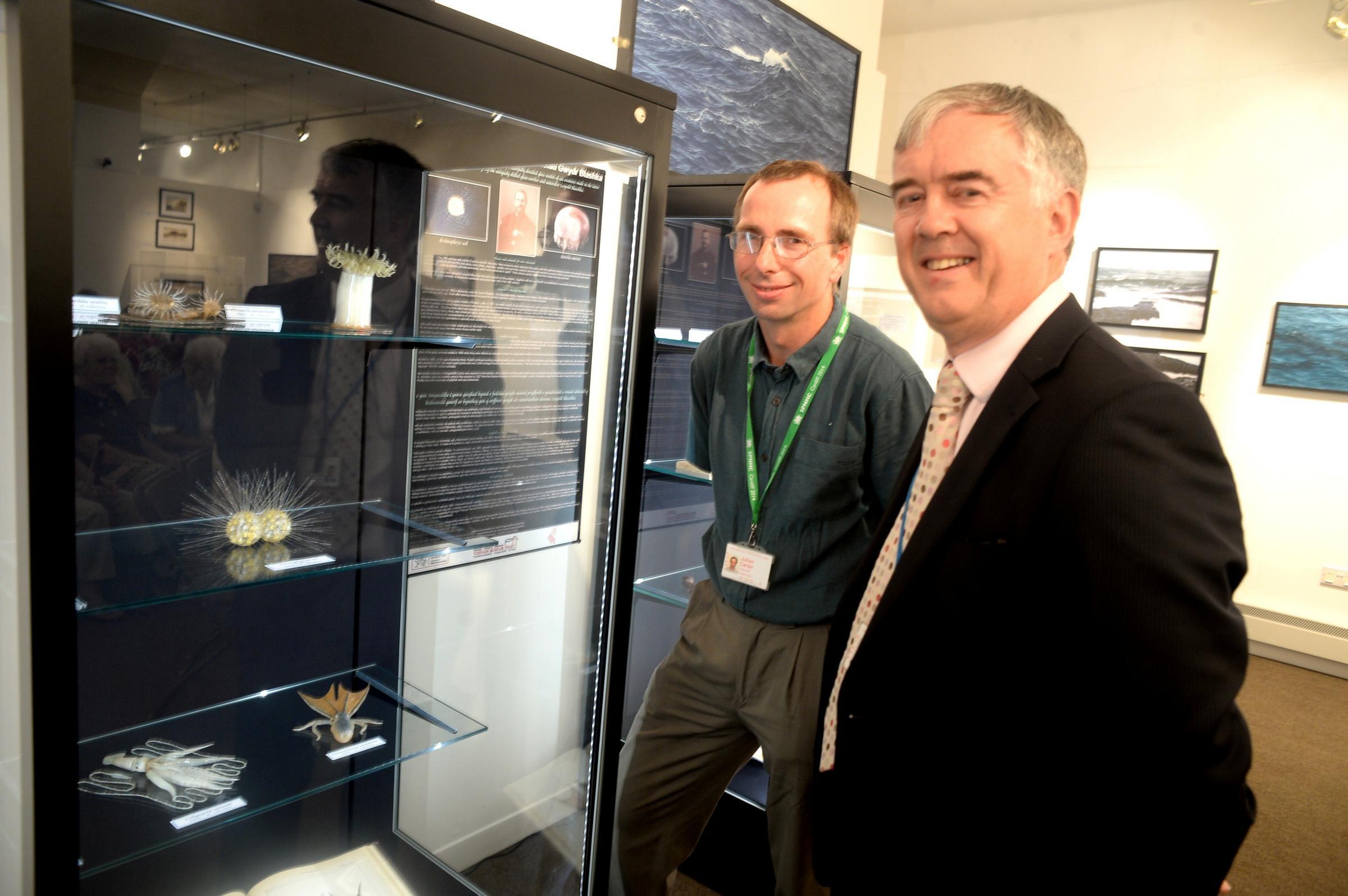 Looking at the Blaschka glass exhibit at Pontypool museum are Julian Carter, (lt), and Mark Richards, deputy director general and director of operations at the National Museum of Wales (8357687)