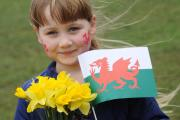 See how schools in Newport and Gwent are celebrating St David's Day