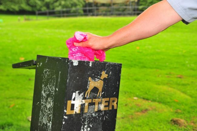 Dog fouling will still remain an offence until the dog controls, but the number of exclusion zones could be reduced