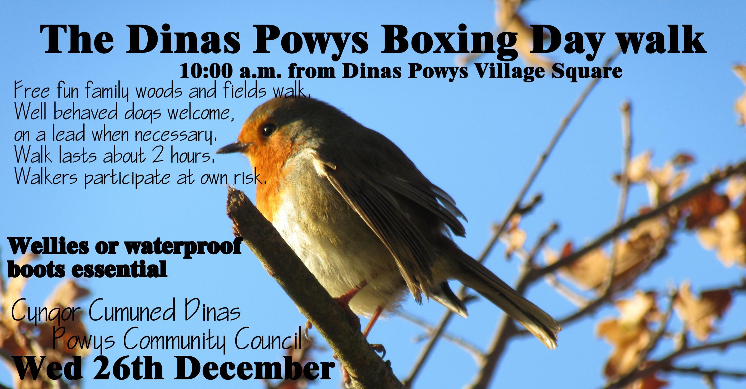 The Dinas Powys Boxing Day Walk