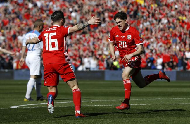 WINNER: Daniel James celebrates his first international goal, which earned Wales a 1-0 win over Slovakia in Cardiff